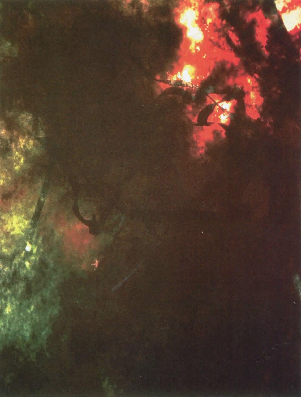 ©1996, Michael J. O'Rourke, À La Recherche du Centre Exact: Arastradero