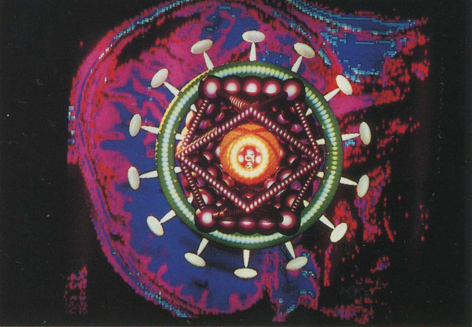 ©1990, ( art )n Laboratory, Robert Mapplethorpe/The Nineties