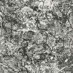 Map.d