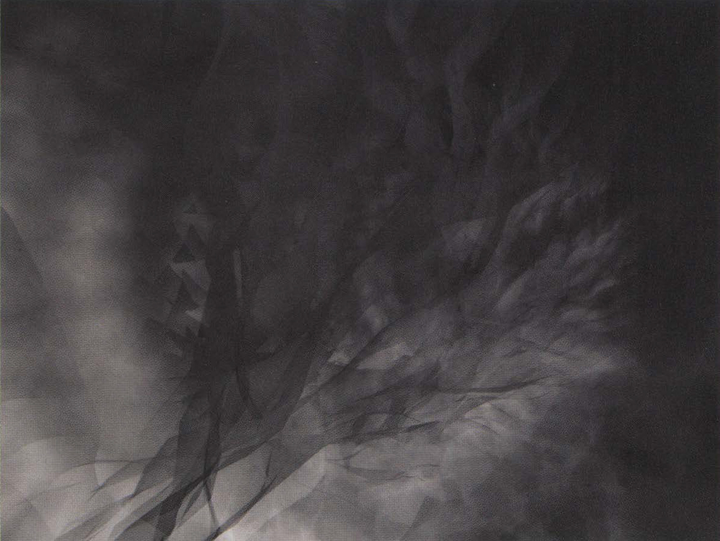 ©2004, Stephan Larson, (re)cognition