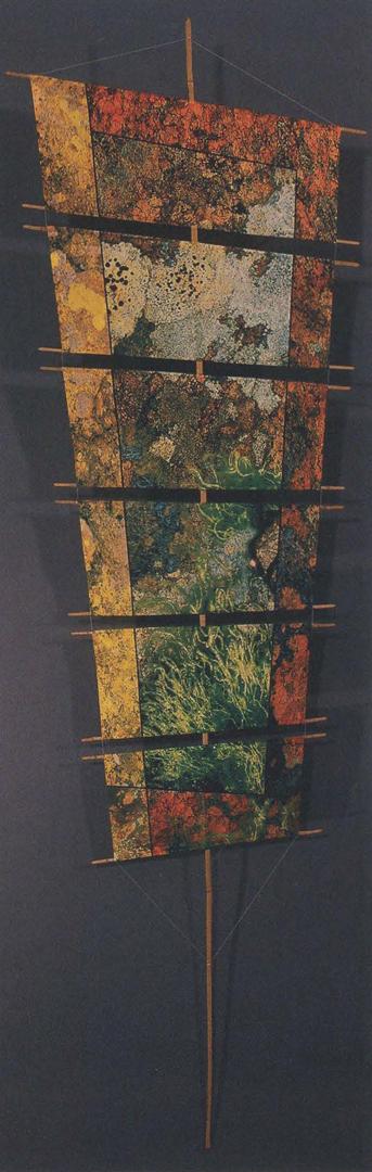 ©2005, Mark Millstein, Lichen Kite