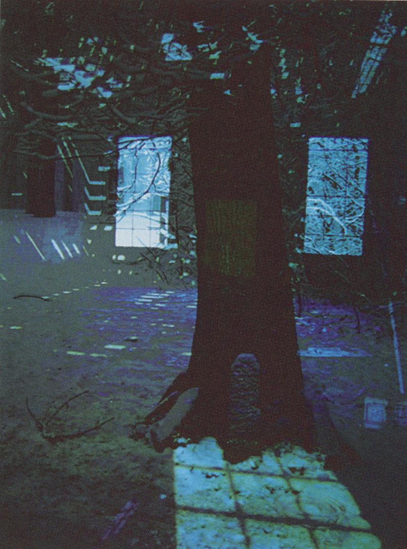 ©2002, Lien Fan Shen, Ching-Fang Chiang, Caroline Quinlan, and Edward Schocker, 'Old Tree' from Reconstruction, a DVD installation