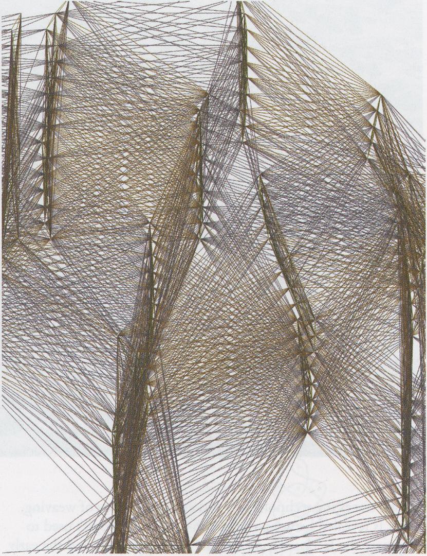 ©2008, Jenny E. Sabin and Peter Lloyd Jones, Branching Morphogenesis