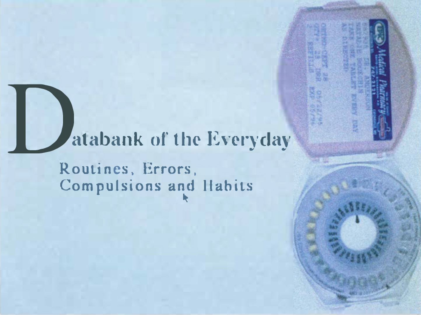 ©1996, Natalie Bookchin, Databank of the Everyday