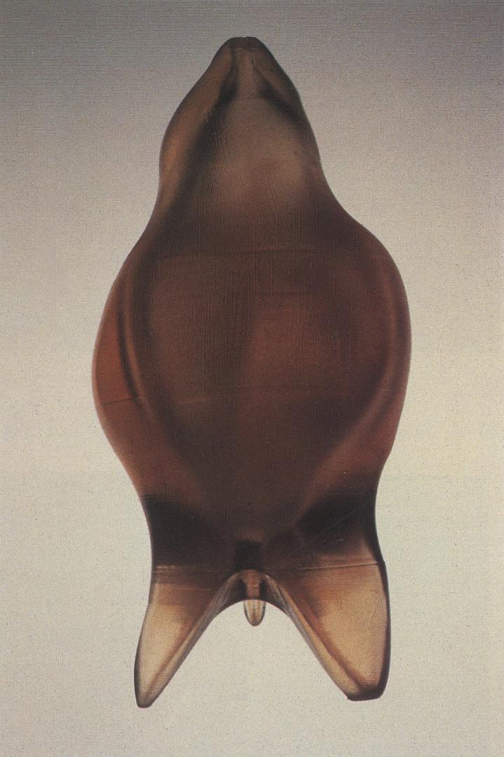 ©1990, Masaki Fujihata, Twin King UBU