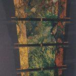 Lichen Kite