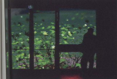 2003 Kim: Nature in Mind