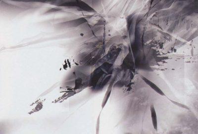 2003 Lu, Guo: Transformation