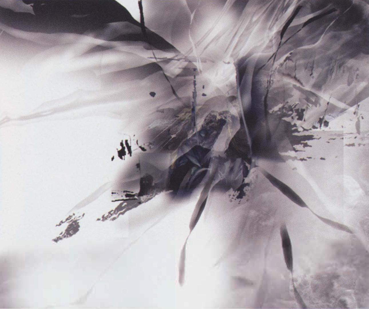 ©2003, Dan Lu and Wayne Guo