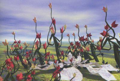 2003 May: Creeping Magnolia