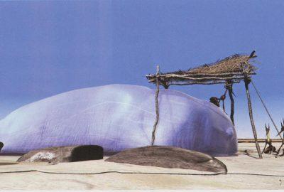 2001 Boulbes: Lamortdetau