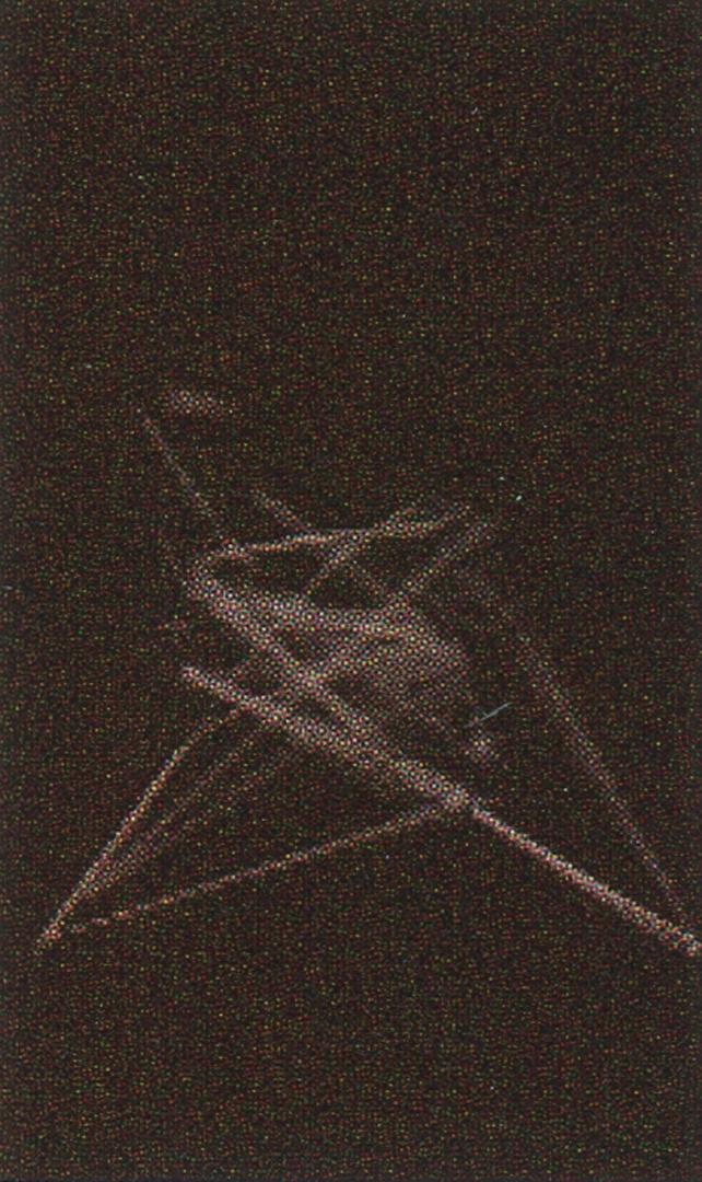 ©2002, Marc Downie, Paul Kaiser, and Shelley Eshkar