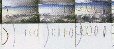 2002 Nishimura: Transposition