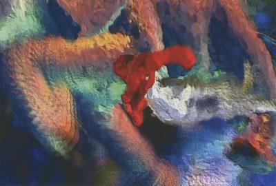 2002 Shukla: StillIRise