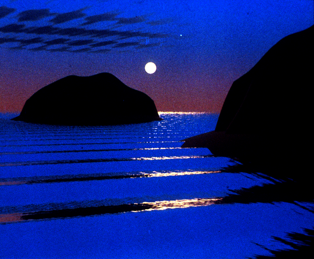 ©1981, Nelson L. Max, Carla's Island