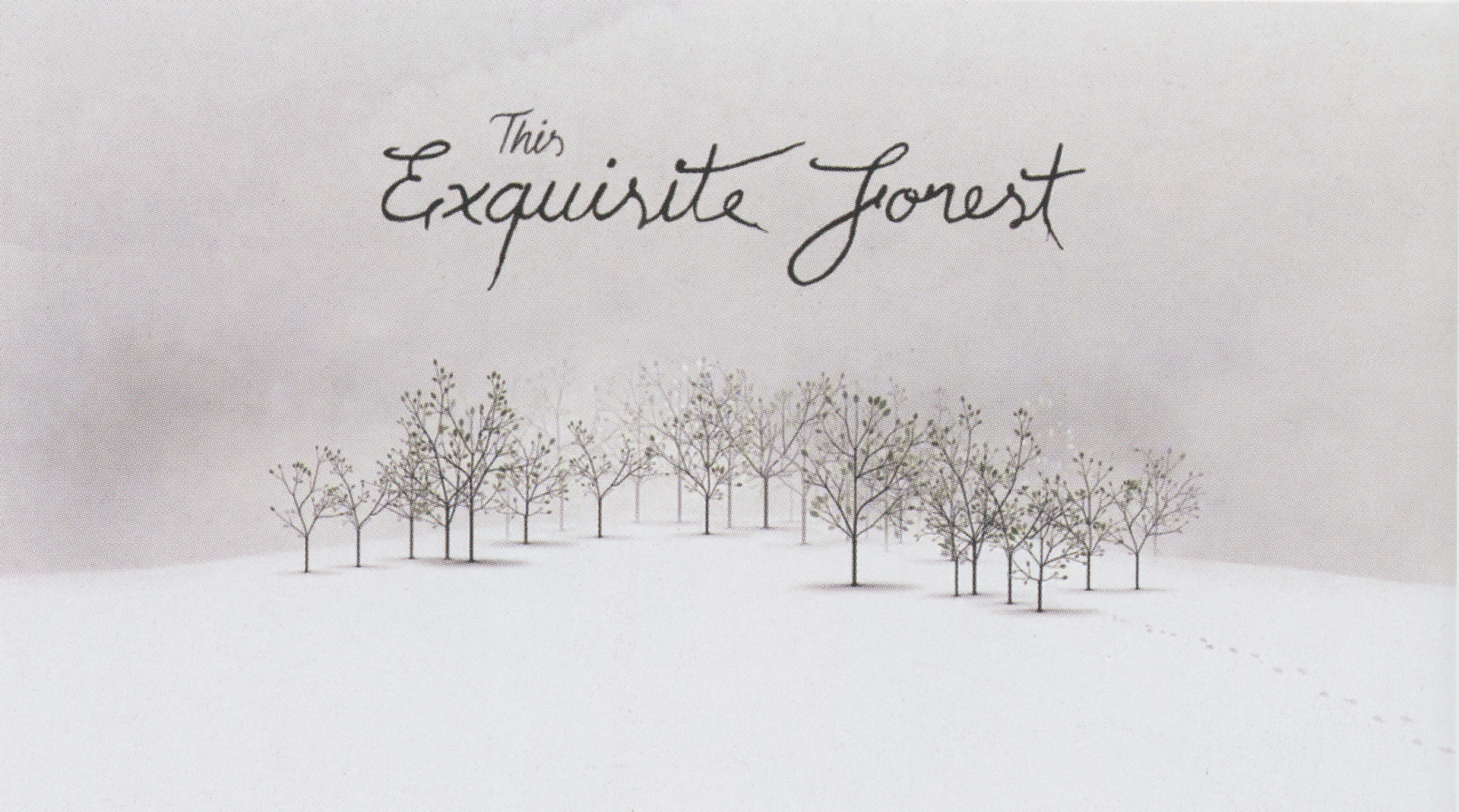 ©2013, Aaron Koblin, This Exquisite Forest
