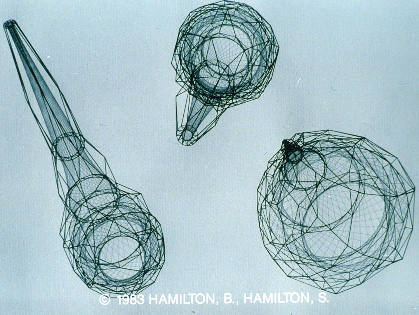©1983, Bruce Hamilton and Susan Hamilton