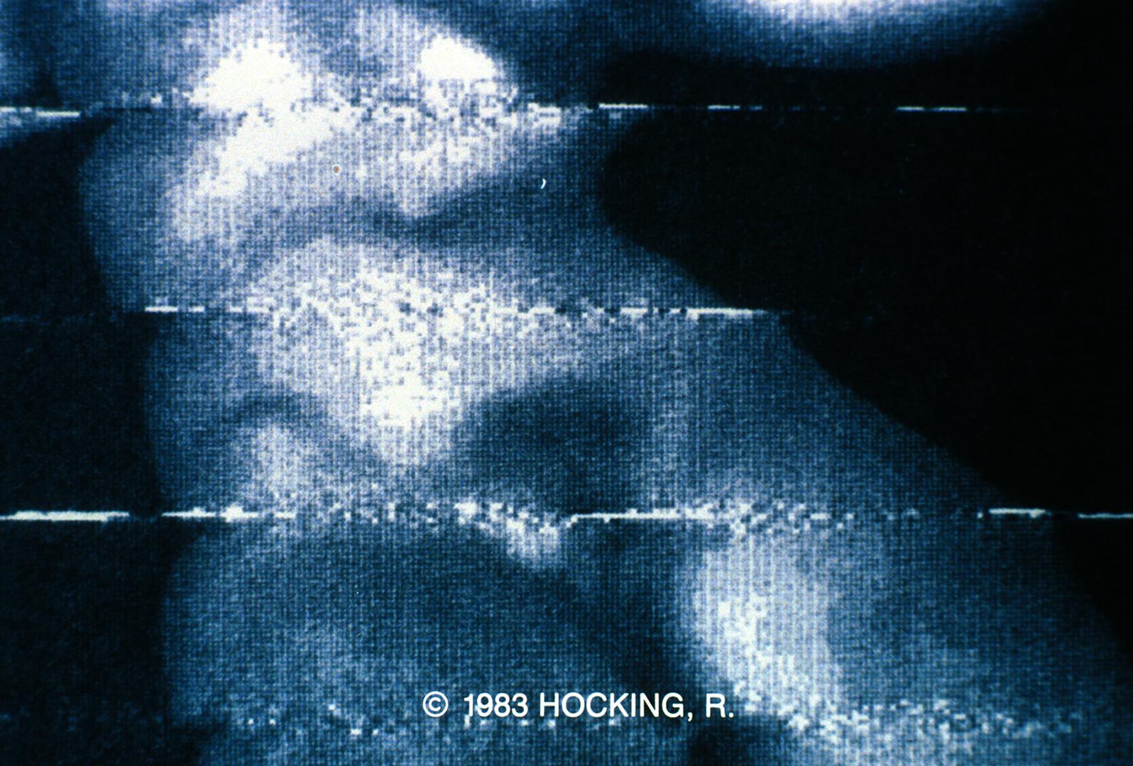 ©1983, Ralph Hocking
