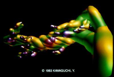 1983 Kawaguchi Growth