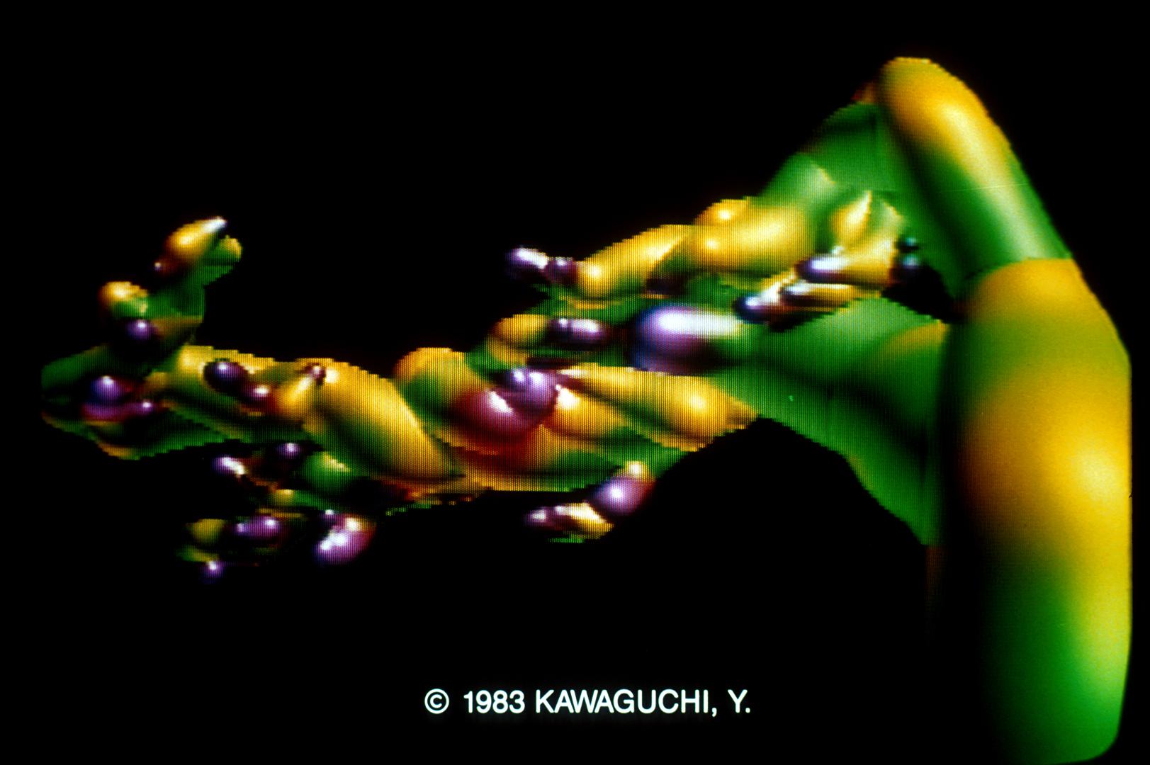 ©, Yoichiro Kawaguchi