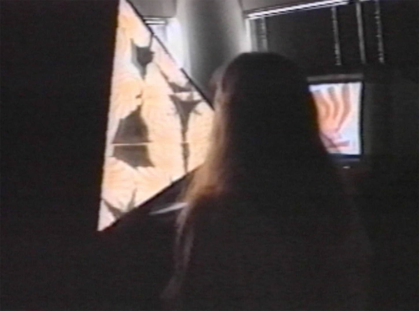 ©1988, Karl Sims and John Watlington, Interactive Video Kaleidoscope