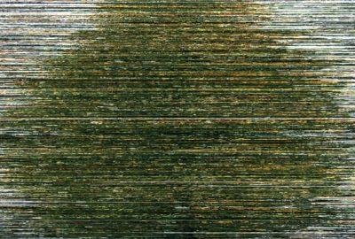 2012 Nam Woven Milieu