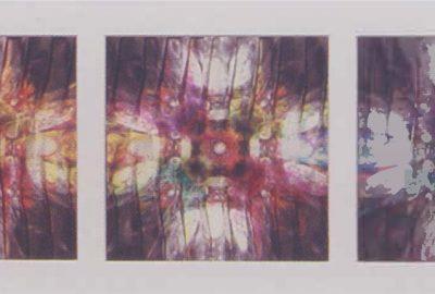 2003 Uchiyama: Fairy's Dream
